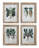 Veggie Root Prints