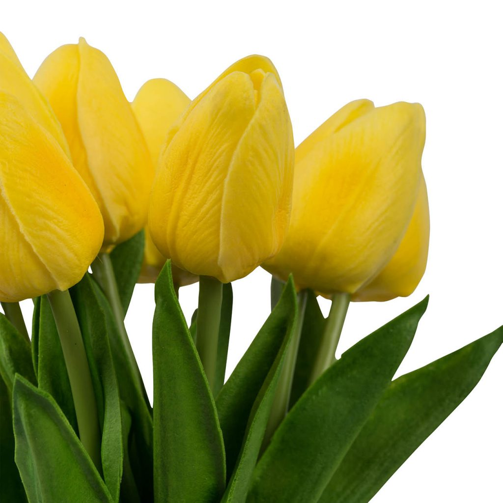Yellow Tulip Bundle