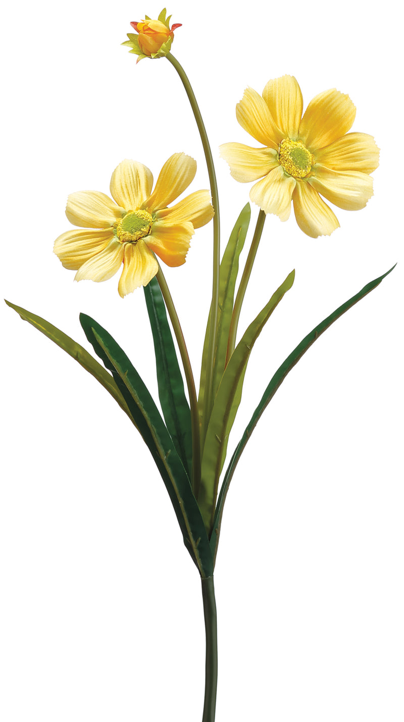 Yellow Gazania Daisy Spray