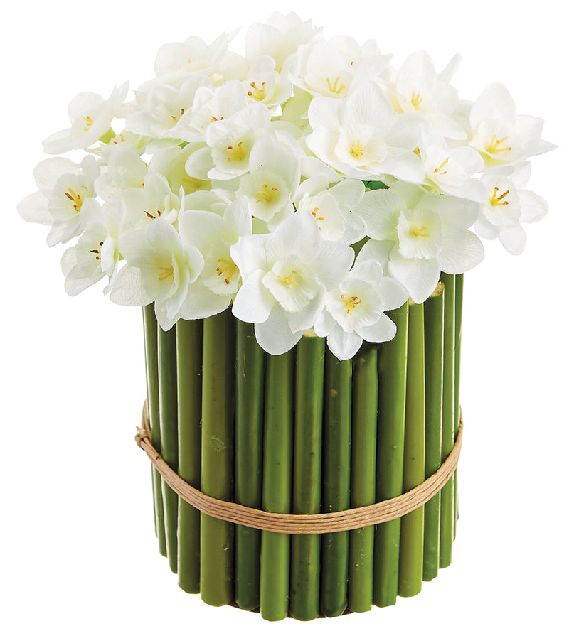 White Daffodils in Bamboo Planter