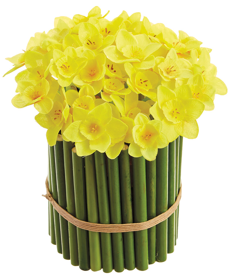 Yellow Daffodils in Bamboo Planter