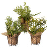 Herbs in Burlap Pot