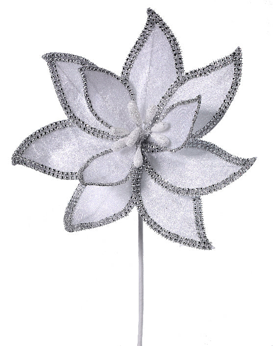 White Poinsettia with Jeweled Egde
