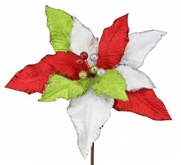 Red Green and White Poinsettia Stem