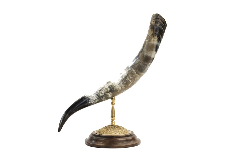 Steer Horn Walnut Finial 20in - Paul Michael Company