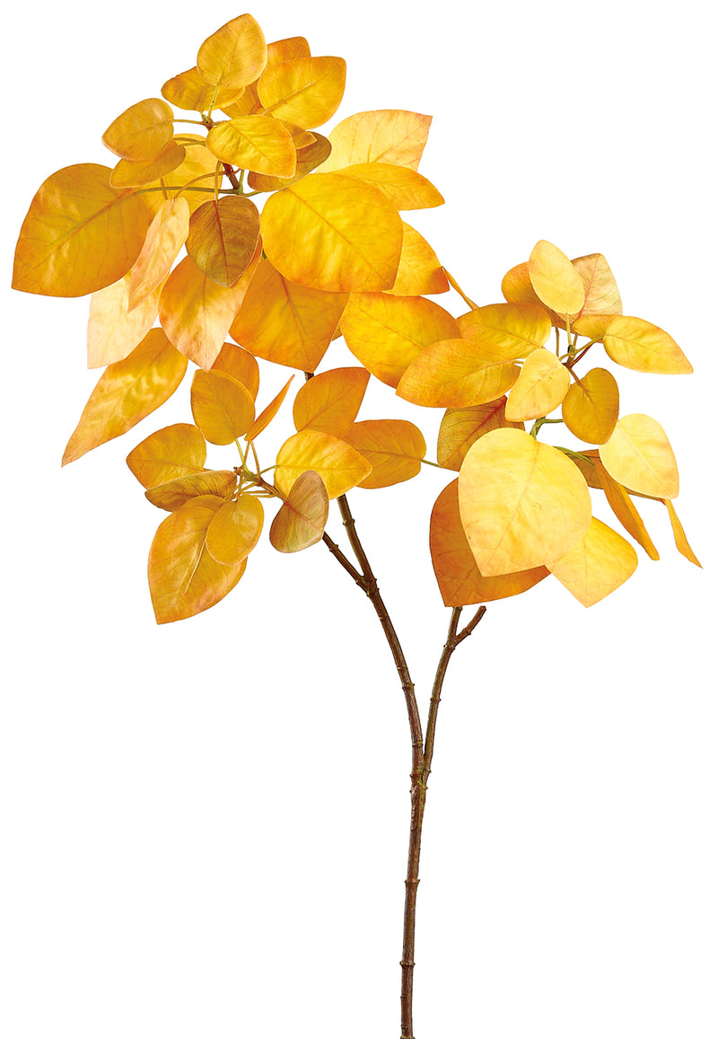 Mustard Cotinus Leaf Spray
