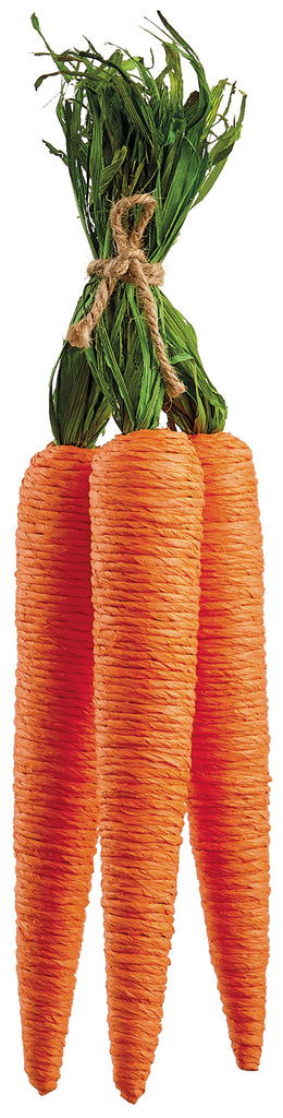 Carrot Bundle