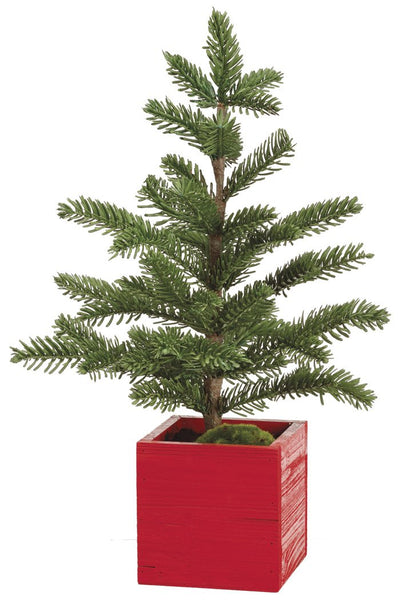 Christmas Pine Tree in Red Box