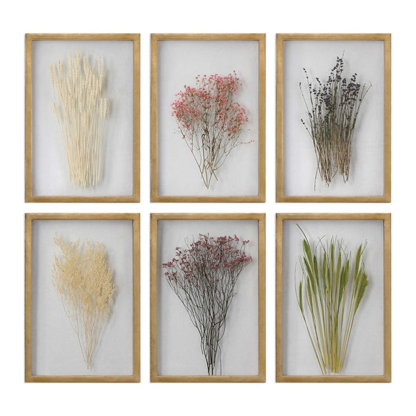 Naturally Preserved Floral Wall Art