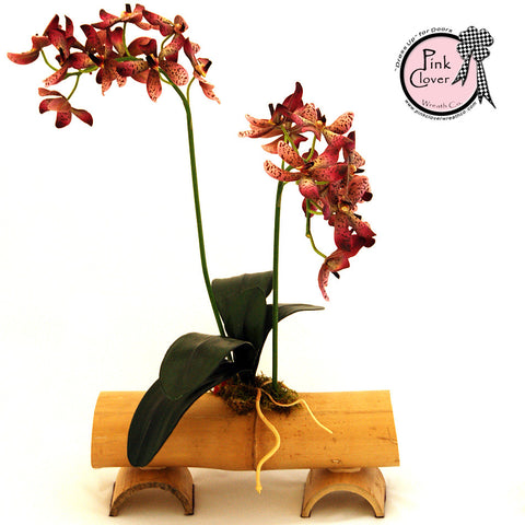Orchid Bamboo Arrangement-purple orchid-bamboo base-Asian flair-floral arrangement