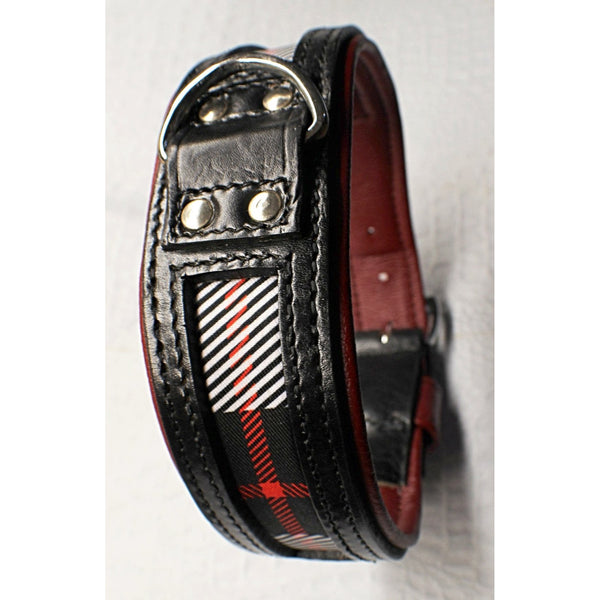 Designer Plaid Dog Collar | Tartan Dog Collar (OLI COLLARS)