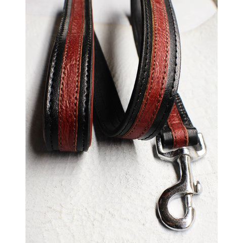 designer dog leash