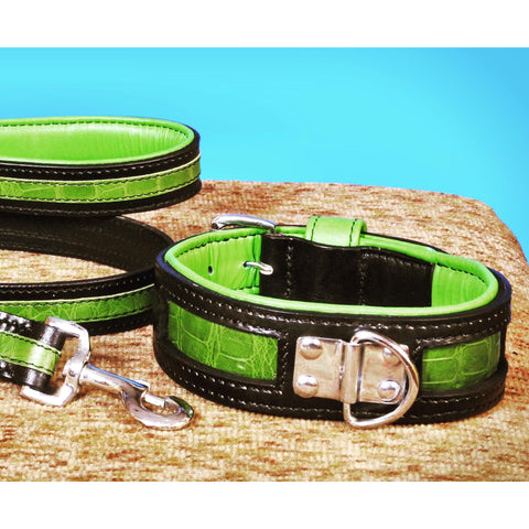 Black and Green Croc Designer Dog Collar - Oli Collars