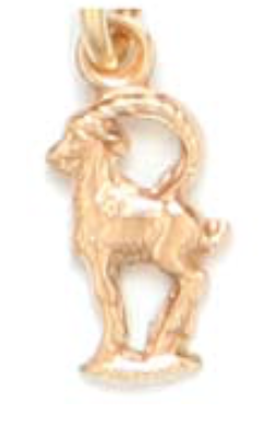 MHS10 - CAPRICORN MINI CHARM
