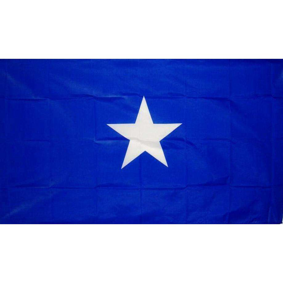 3' x 5' Endura-Poly Bonnie Blue Flag