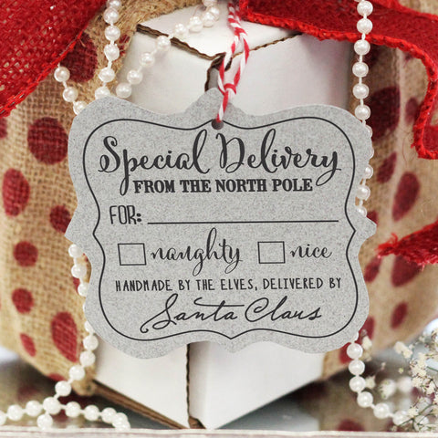 "Gift Tag Stamp ""Special Delivery"""