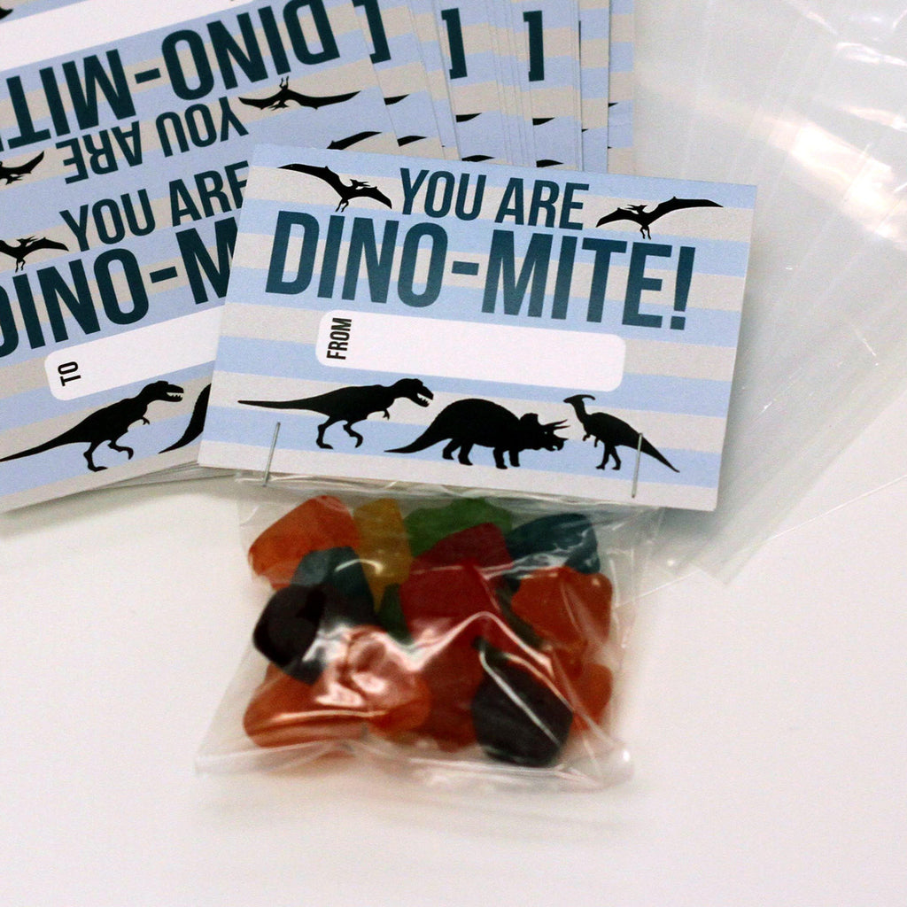 "Valentine Cards with Goodie Bags (Set of 20) - ""Dino Mite"""