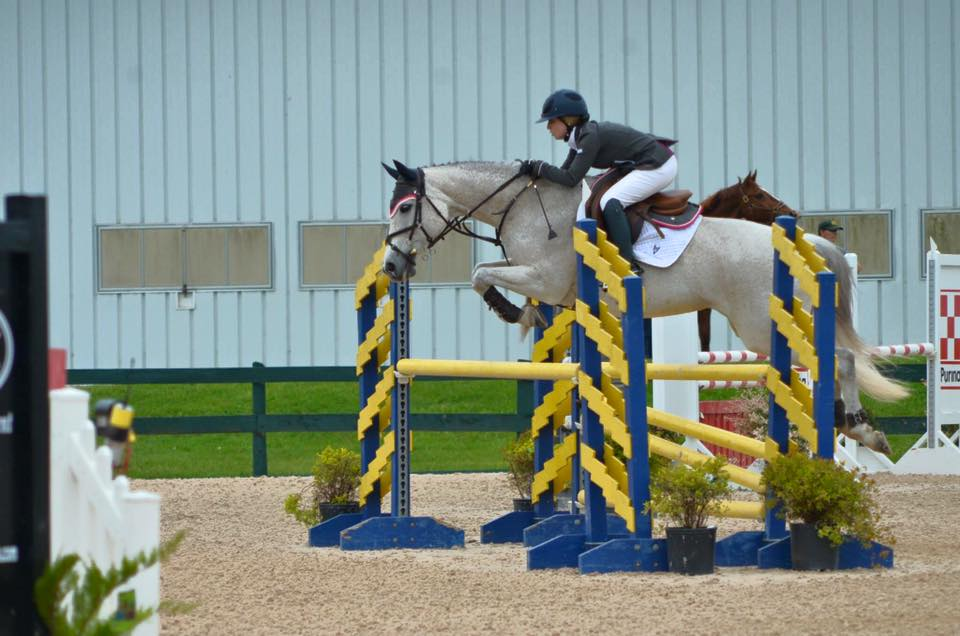 Any Sport Any Season: Compression socks save Equestrians and keep them comfortable in the saddle.