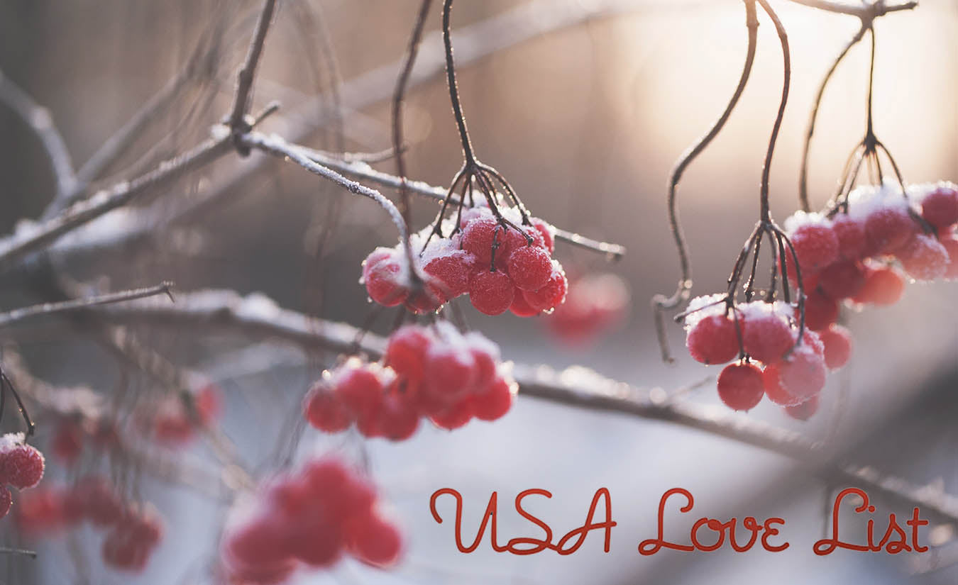 Proud to be American Made AND to be featured on USA Love List!