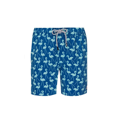 Tom & Teddy Flamingo Trunks Sky Blue