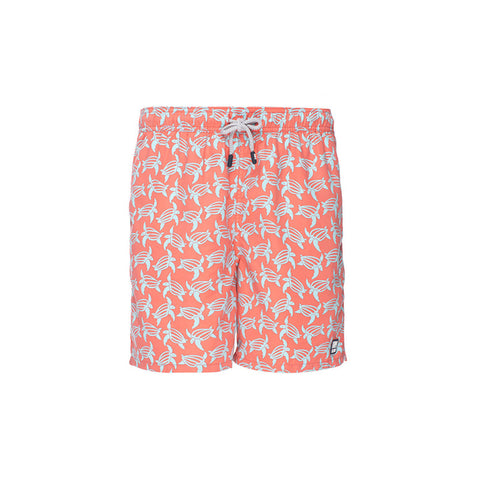 Tom & Teddy Trunks Turtles Orange & Blue