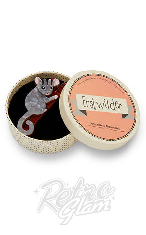 Erstwilder Possum at Play Brooch box