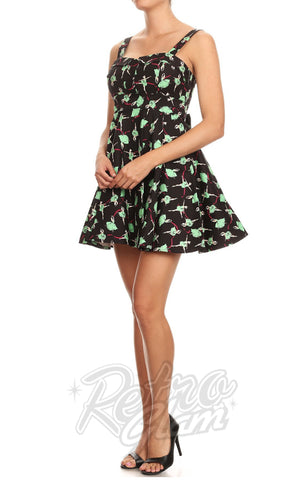 Ixia Pin-up Cruiser Dress in Ballerina Print