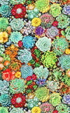 Retrolicious Succulents fabric