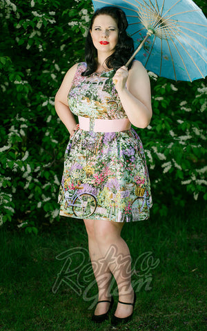 Retrolicious Garden Dress