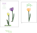 Mandy's Tulips 4x6 Clear Stamp set {A100}