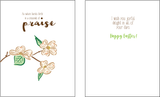 Dogwoods in Bloom Clear 4x6 stamp set retail $12.99