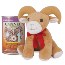 Canned Bighorn Sheep