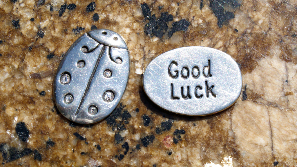 Good Luck Lady Bug Inspirational Coin