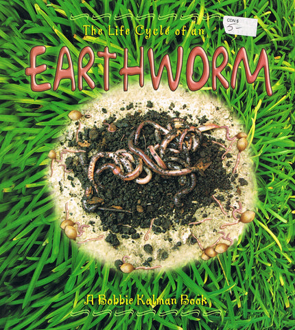 Earth Worm-Life Cycle