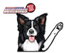 Border Collie Riley Dog Waving WiperTags