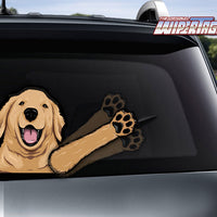 Bailey Golden Retriever Dog Waving