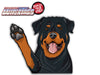 Moe the Rottweiler Dog Waving WiperTags
