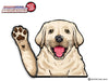 Chloe Waving Yellow Lab Puppy WiperTags