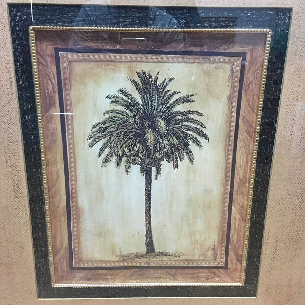 Framed Palm Tree (#6092) - The Things And Stuff - 2