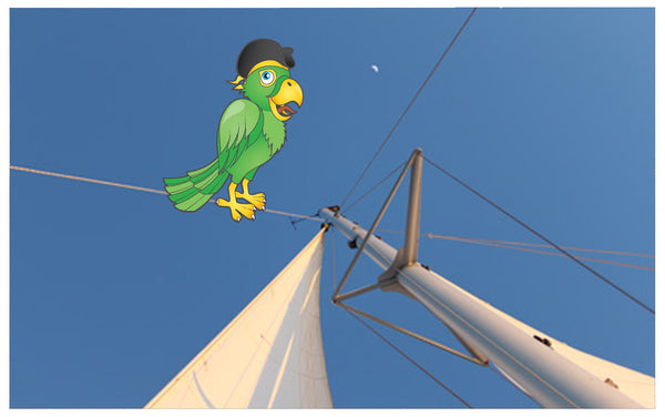 Pirate parrot for kids blog