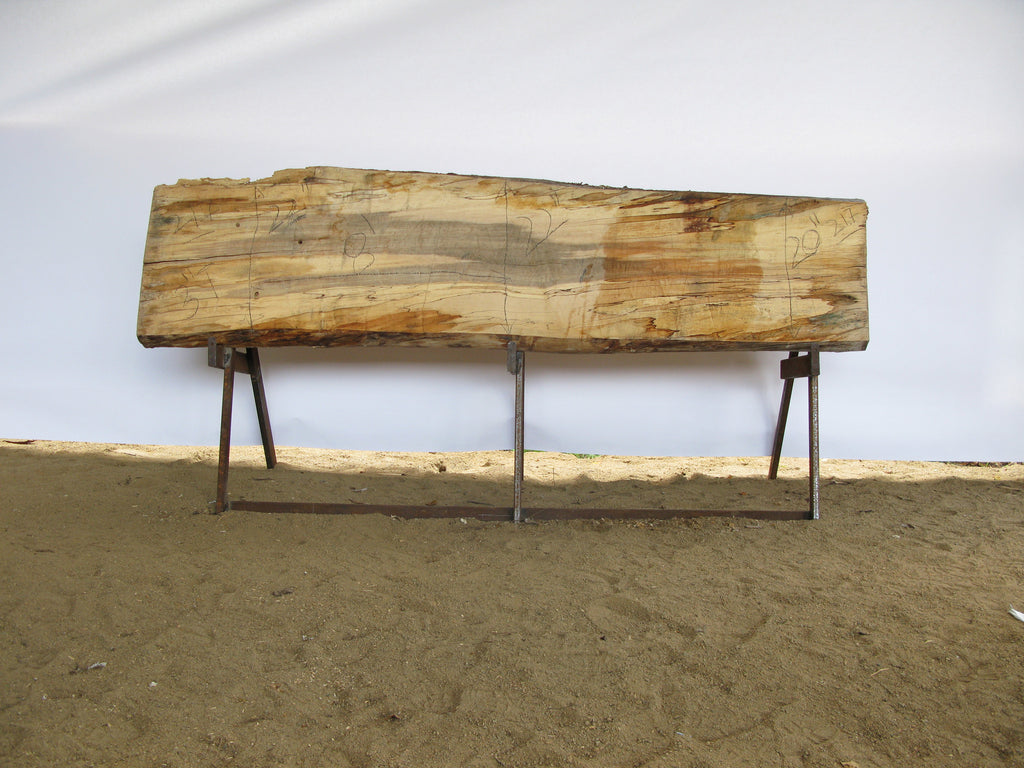 "Spalted Maple A Slab 3.5"" x 21"" x 8' SPM-217"