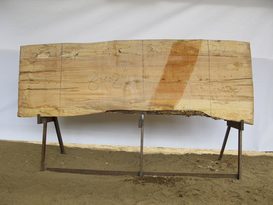 "Spalted Maple A Slab 3"" x 31"" x 8.17' SPM-250"