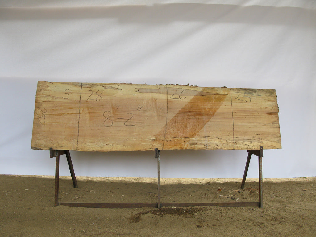 "Spalted Maple A Slab 3"" x 26"" x 8.17' SPM-252"