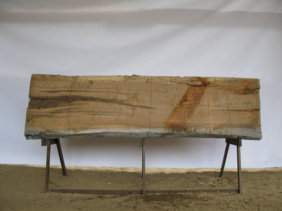 "Maple C Slab 3.5"" x 26"" x 8.33' SPM-267"