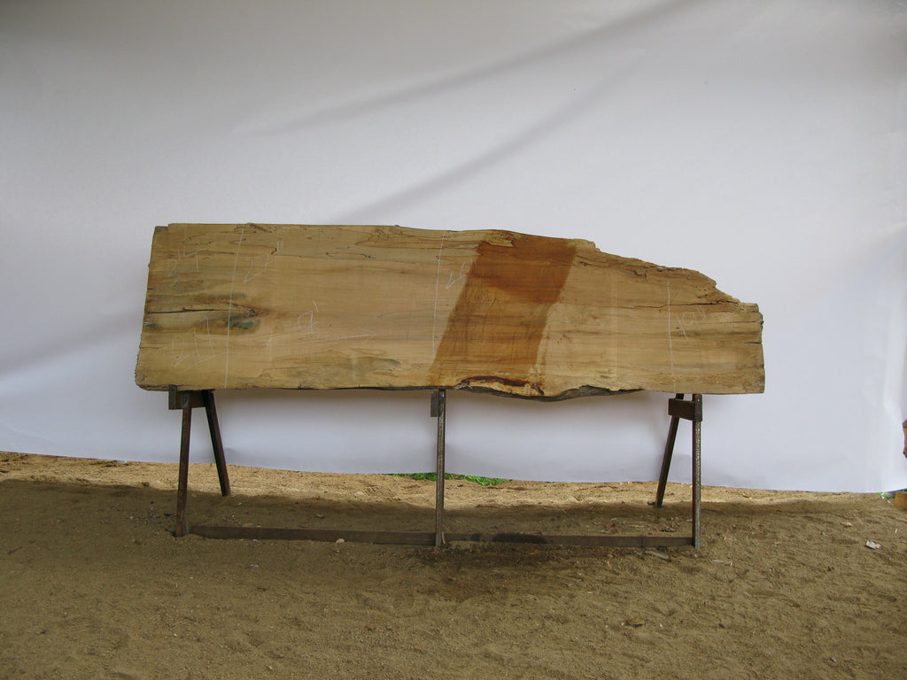 "Spalted Maple B Slab 3"" x 24"" x 8' SPM-277"