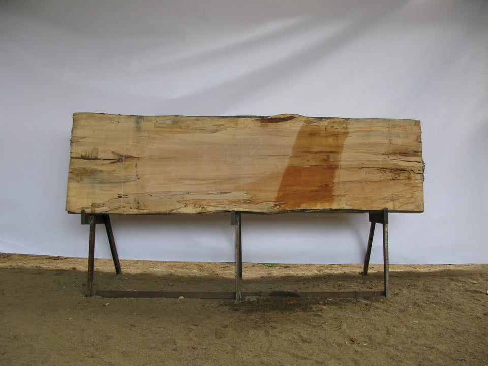 "Spalted Maple B Slab 3"" x 27"" x 8' SPM-278"