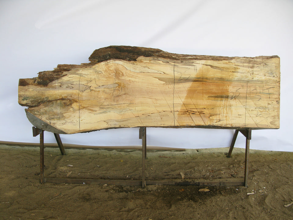 "Spalted Maple B Slab 3"" x 25"" x 8' SPM-284"
