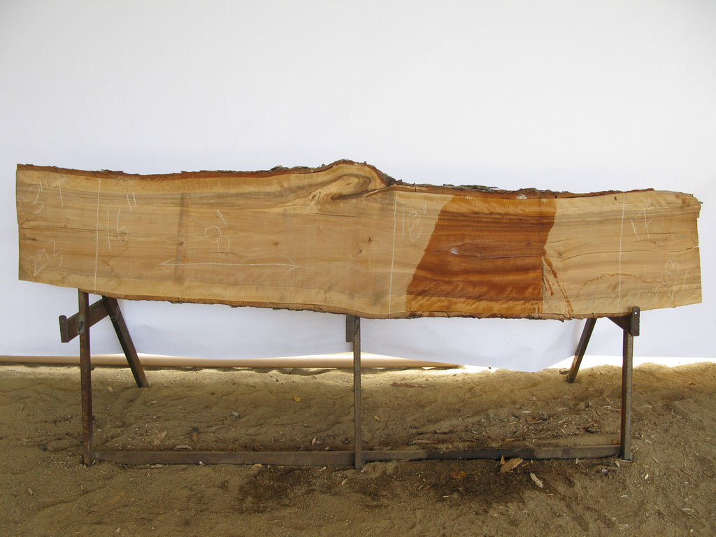 "Birch B Slab 3"" x 17"" x 8' BIR-293"