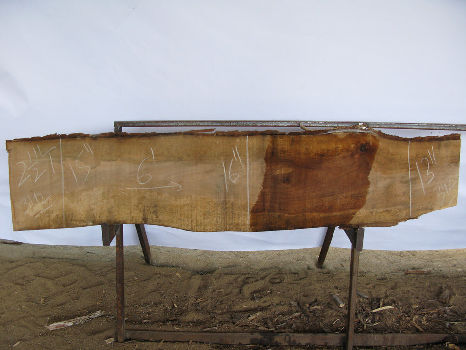 "Birch A Slab 2.5"" x 15"" x 6' BIR-342"