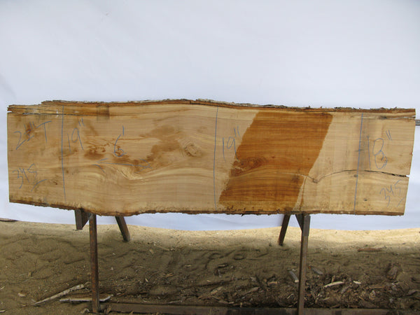 "Birch B Slab 2.5"" x 19"" x 6' BIR-345"